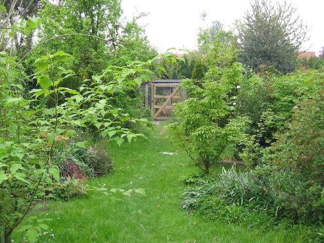 Petit jardin écologique et harmonieux aménagé dans le Nord-Pas-de Calais
